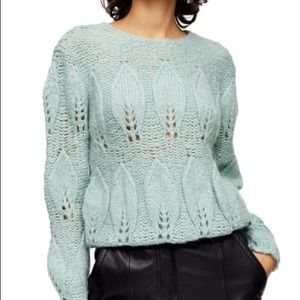 TOPSHOP Knitted Petal Gauzy Pointelle Sweater